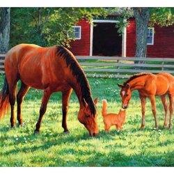 Пазл онлайн: Ты тоже лошадка?