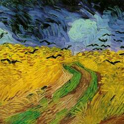 Пазл онлайн: Стая ворон над хлебным полем