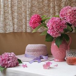 Пазл онлайн: Розовая гортензия