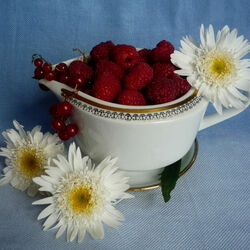 Пазл онлайн: Хризантемы и ягоды