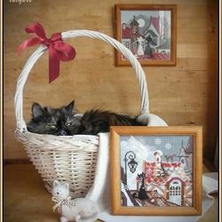 Пазл онлайн: Коты и вышивки