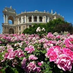 Пазл онлайн: Одесский национальный академический театр оперы и балета