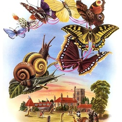 Пазл онлайн: Полет бабочек