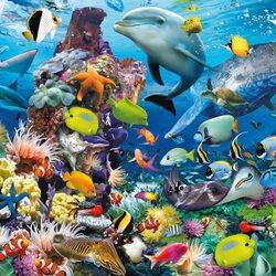 Пазл онлайн: Океан