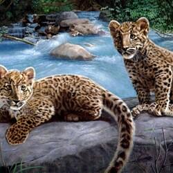 Пазл онлайн: Детеныши леопарда