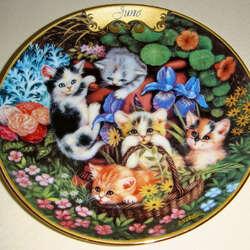 Пазл онлайн: Июньские котята
