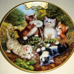 Пазл онлайн: Августовские котята
