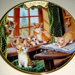 Пазл онлайн: Сентябрьские котята