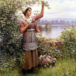 Пазл онлайн: Девушка, срезающая розы