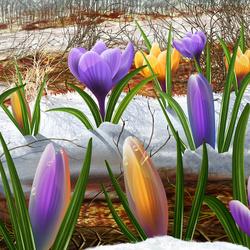 Пазл онлайн: Весна пришла!