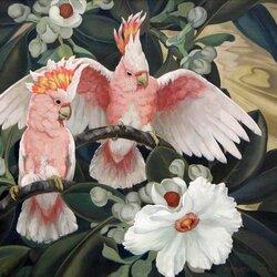 Пазл онлайн: Розовый какаду