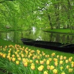 Пазл онлайн: В зеленых тонах