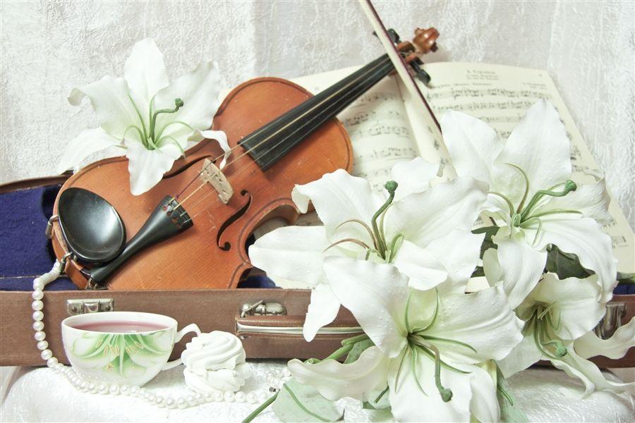 картинка скрипка и цветы осветленный шоколадный, часто