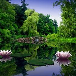 Пазл онлайн: Лесной пруд
