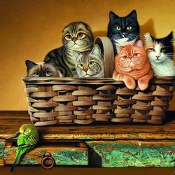 Пазл онлайн: Кошки и попугай