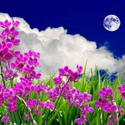 Пазл онлайн: Пейзаж с орхидеями