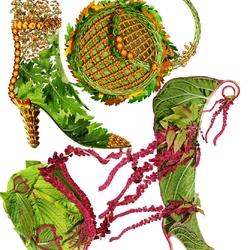 Пазл онлайн: Хризантемы и Акалифа