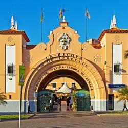 Пазл онлайн: Санта-Круз-де-Тенерифе. Центральный рынок