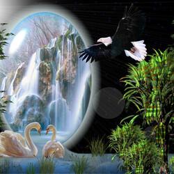 Пазл онлайн: Учитесь верности у лебедей