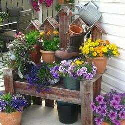 Пазл онлайн: Цветник