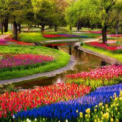 Пазл онлайн: Парк в Нидерландах