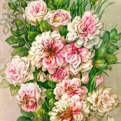 Пазл онлайн: Июль - время роз