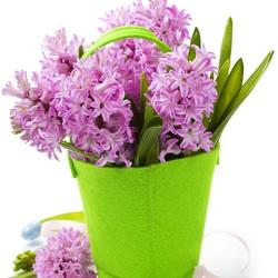 Пазл онлайн: Яркая весна