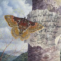 Пазл онлайн: Мудрость для бабочки