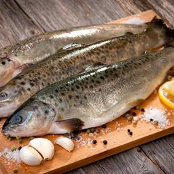 Пазл онлайн: Свежая рыбка