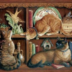 Пазл онлайн: Кошки в шкафу