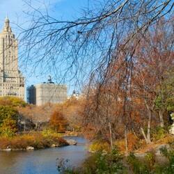 Пазл онлайн: Нью-Йорк, США
