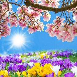 Пазл онлайн: Весна-краса