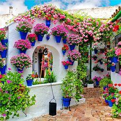 Пазл онлайн: Фестиваль цветов в Кордове