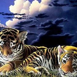 Пазл онлайн: Тигрята