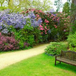 Пазл онлайн: Сады Эксбери (Exbury Gardens)