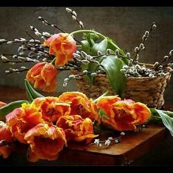 Пазл онлайн: Цвета пламени