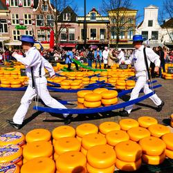 Пазл онлайн: Сырная ярмарка в Алкмаре