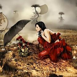 Пазл онлайн: Последние розы на земле