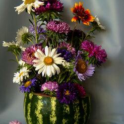 Пазл онлайн: Бывают вазы разные