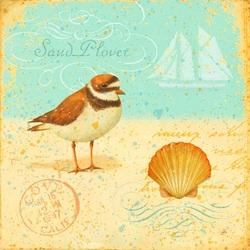 Пазл онлайн: Птичка на песке
