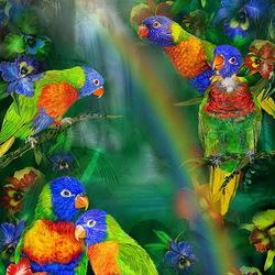 Пазл онлайн: Радужные попугайчики