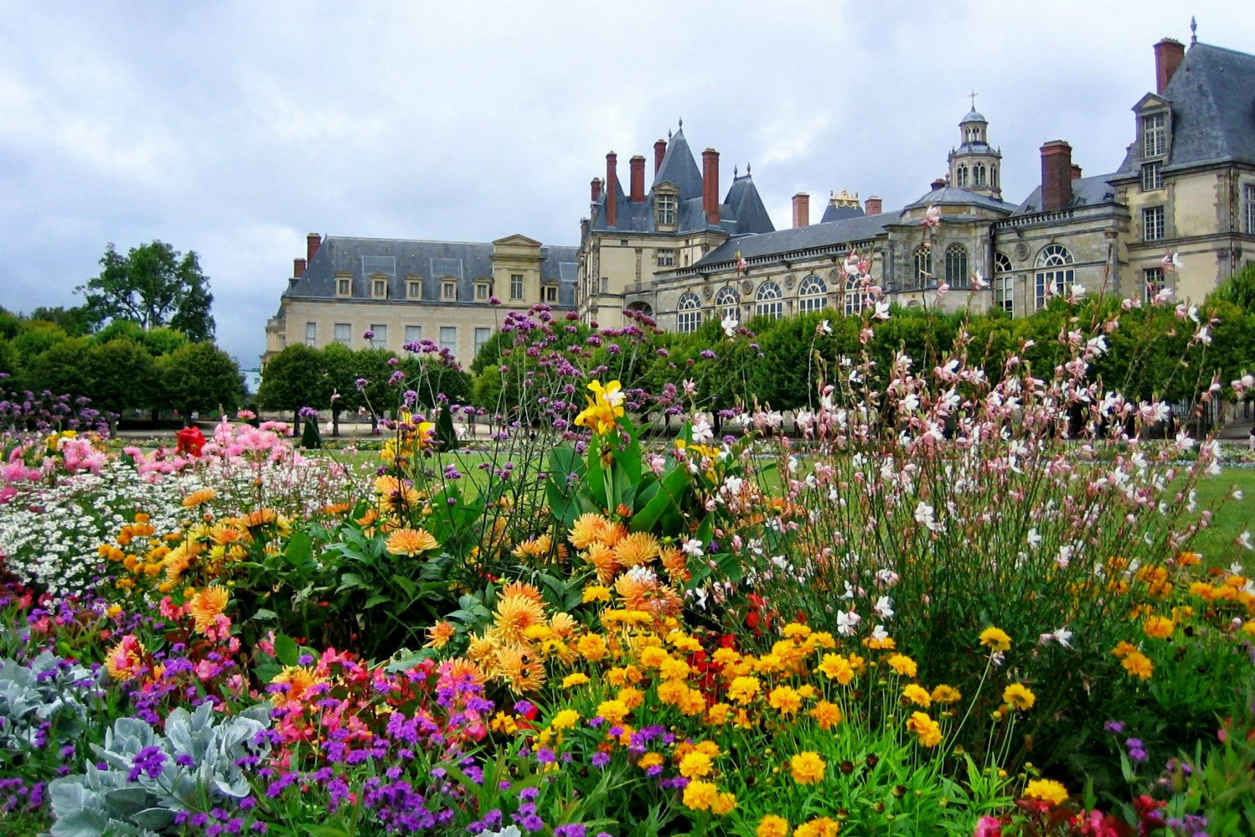 Фото цветов франция