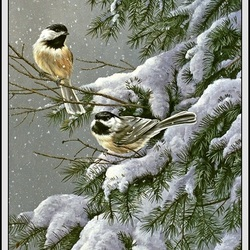 Пазл онлайн: Птицы зимой
