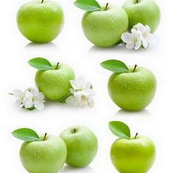 Пазл онлайн: Яблочный коллаж