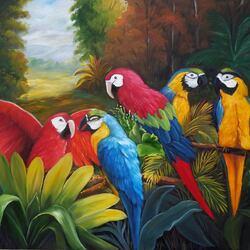 Пазл онлайн: Попугаи