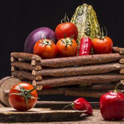Пазл онлайн: Колодец витаминов