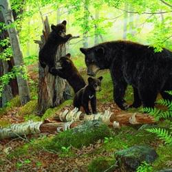 Пазл онлайн: Мама с медвежатами