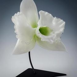 Пазл онлайн: Гигантская белая орхидея  из стекла