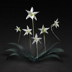 Пазл онлайн: Гигантские цветы из стекла
