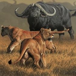 Пазл онлайн: Охота